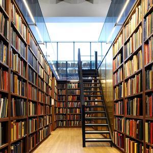 Библиотеки Большого Камня