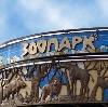 Зоопарки в Большом Камне